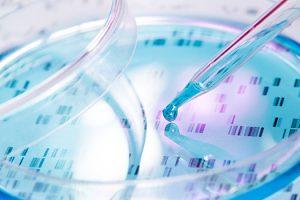 Where Do Regenerative Cells Come From Tarpon Springs, FL